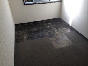 room_floor_04